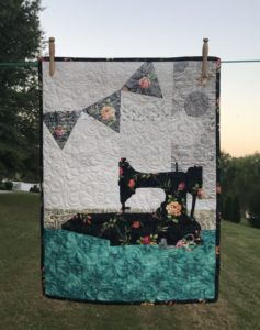 Image of Quilt Hanging Outsides